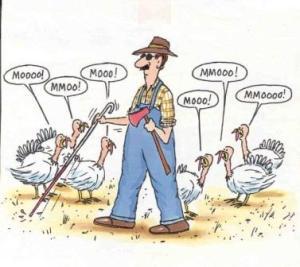 thanksgiving-2016-17